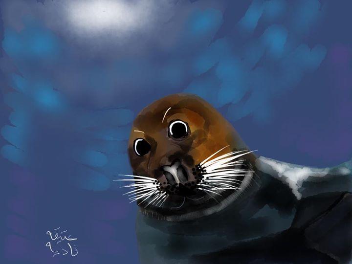 ANZ Studio Seal Selfie
