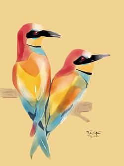 ANZ Studio Rainbow birds
