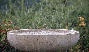 rain-645797_960_720.jpg