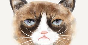 Let's Paint Grumpy Cat