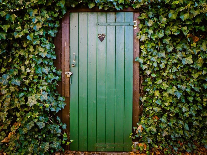 green door with plants