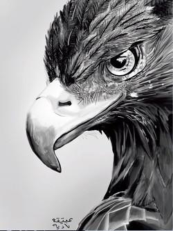 ANZ Studio Eagle