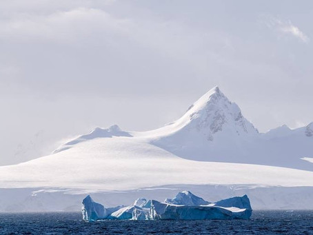 The Time I Found a Recipe for Seal Brains in Antarctica (Part 2)