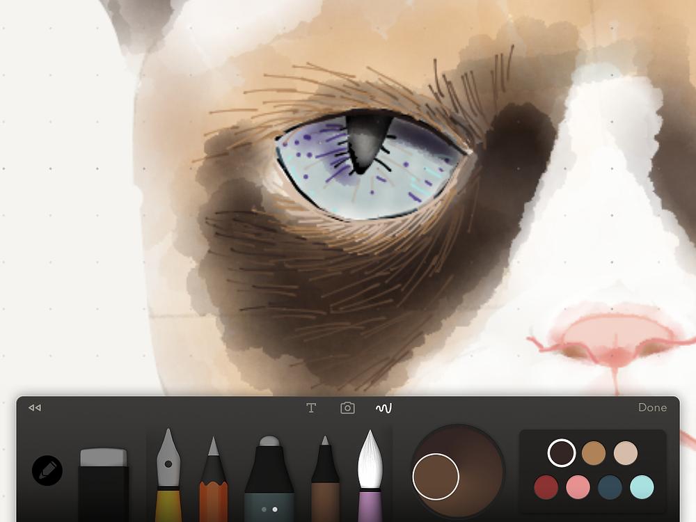 Details eye pupil