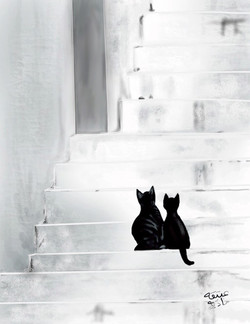 ANZ Studio Cats on Stairs