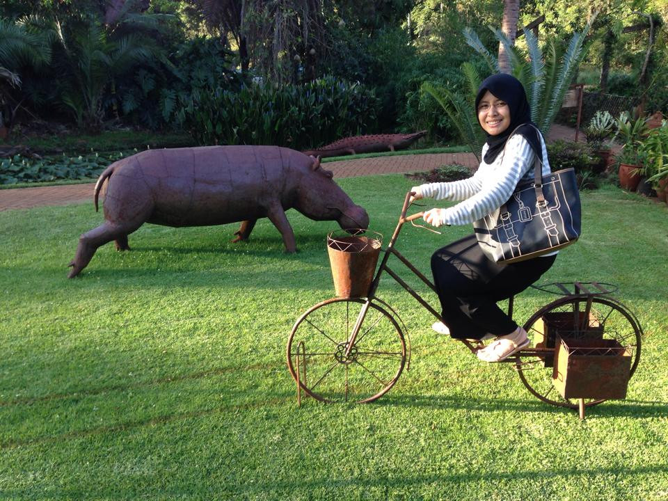 Cycling by a metal hippo