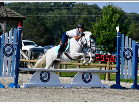 Are you ready to horse show?
