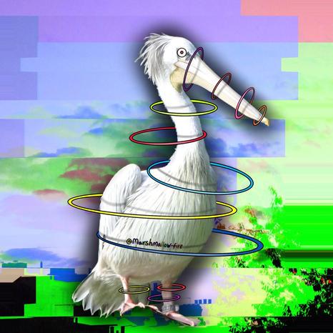 Untitled_Artwork 13.jpg