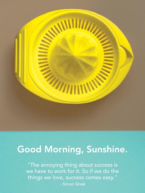 Sunshine Poster #2