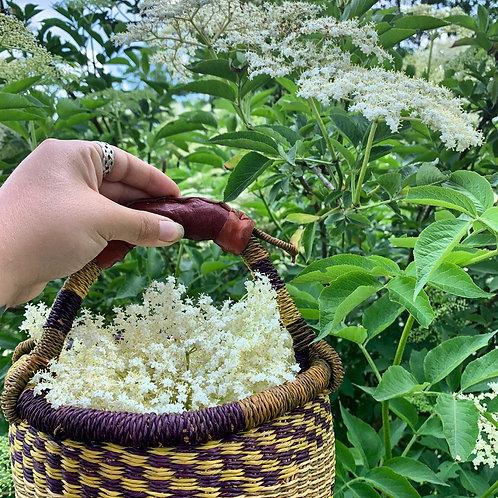 Elderflower Glycerite