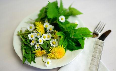 herbs-5145353_1920.jpg