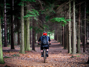COVID-19: Who's Afraid to Exercise Outdoors?
