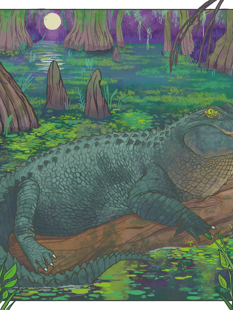 Alligator Commission