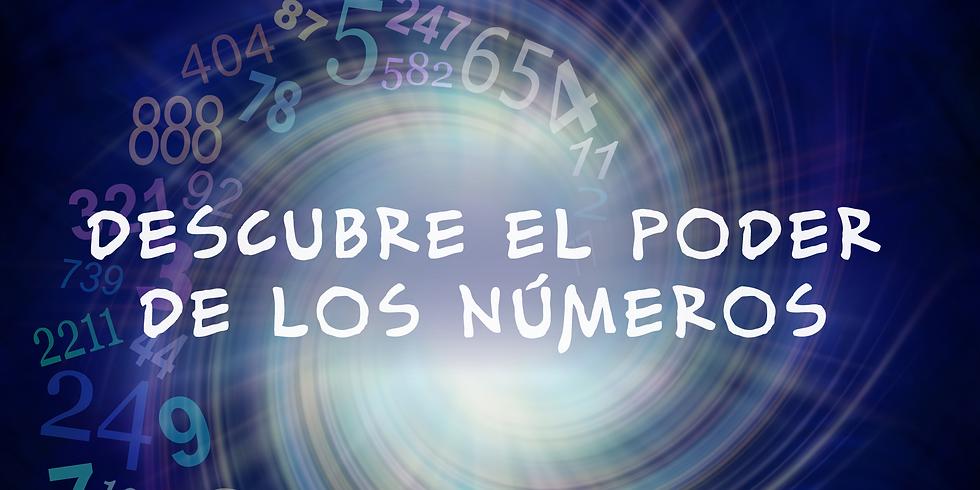 Taller Online de Numerología
