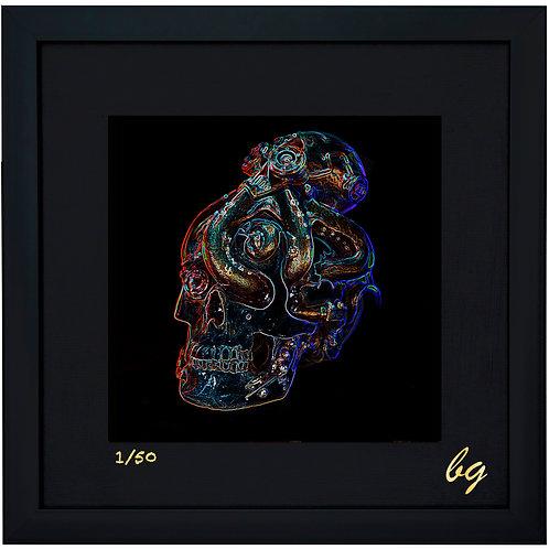 Octo Neon Skull