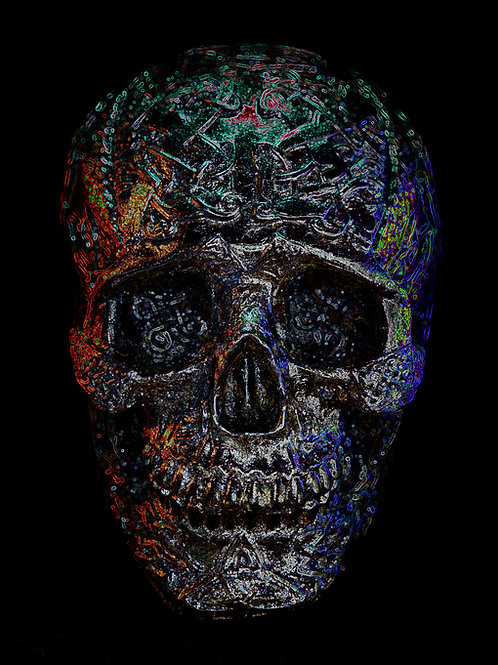 "Neon Skull Aluminium print 16""x20"""