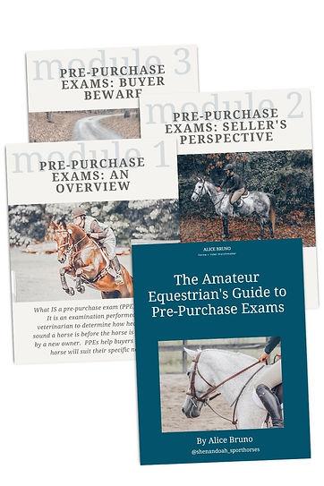 PPE Workbook - 4 pages.jpg