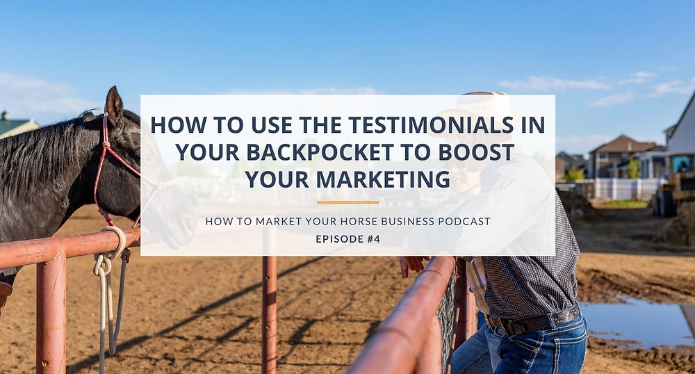 how to market your horse business podcast episode 4