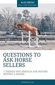 Alice Bruno - questions ask sellers.jpg