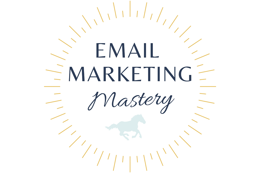 website audit training kit stormlily marketing