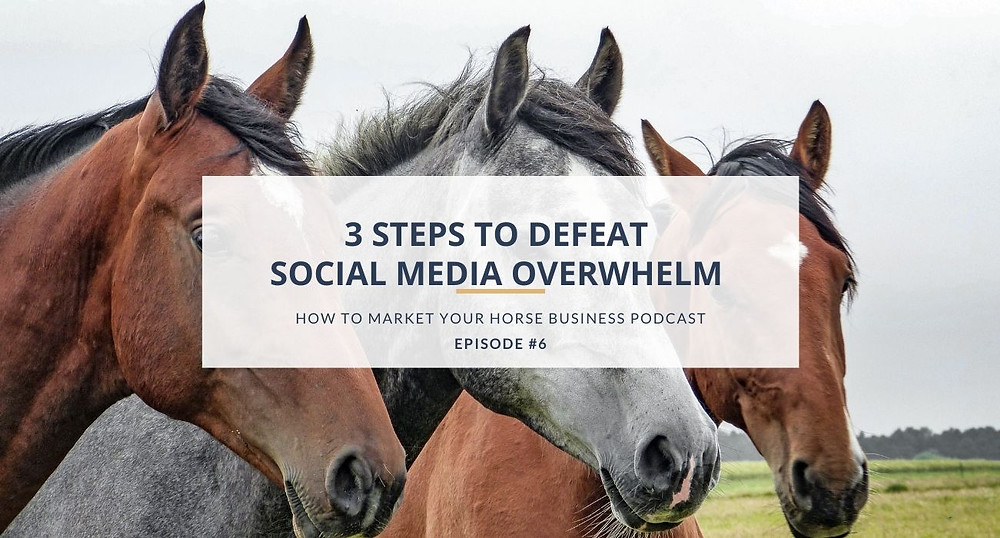 how to market your horse business podcast episode 6