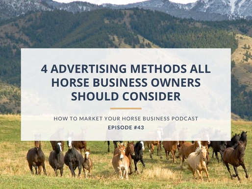 4 Advertising Methods Every Horse Business Owner Should Consider