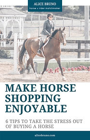 AliceBruno_Make Horse Shopping Enjoyable