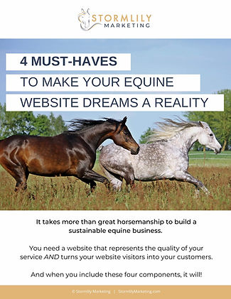 4-must-haves-equine-website-dreams_pg1.j