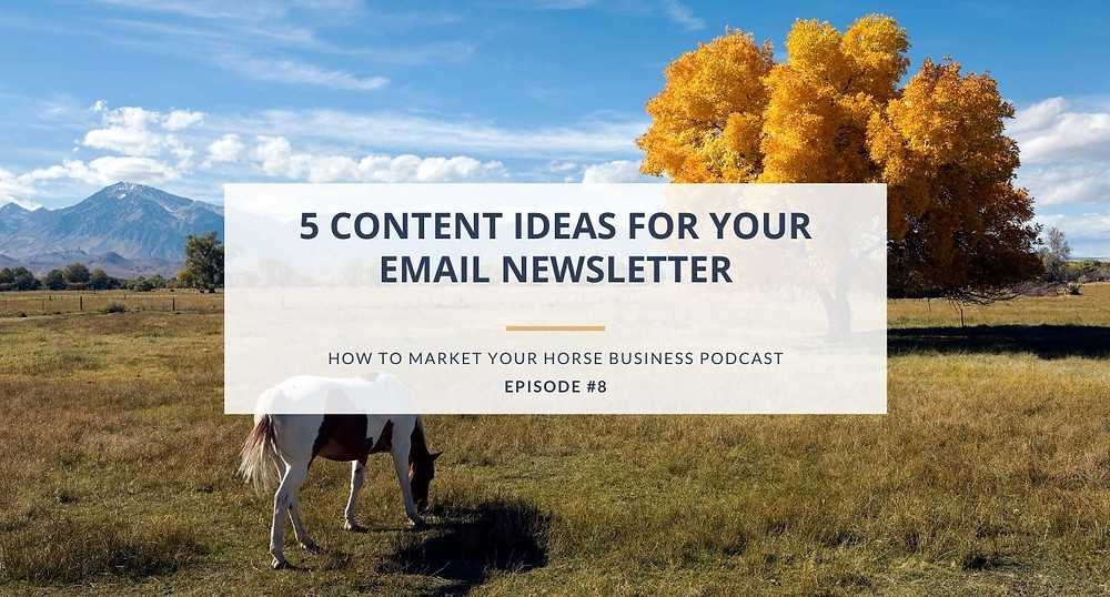 how to market your horse business podcast episode 8