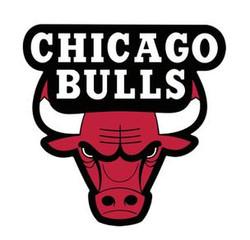 chicago-bulls-logo_304.jpg