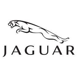 Jaguar_ai.png