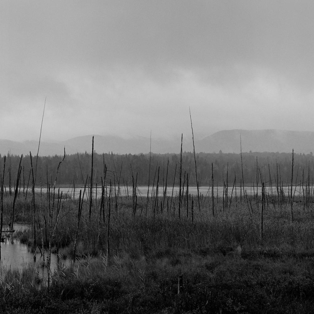 Tupper Lake Roadside 11x14matte