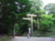 RIMG2240.JPG