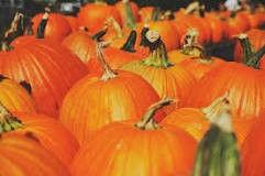 Pumpkin Facial Seasonal