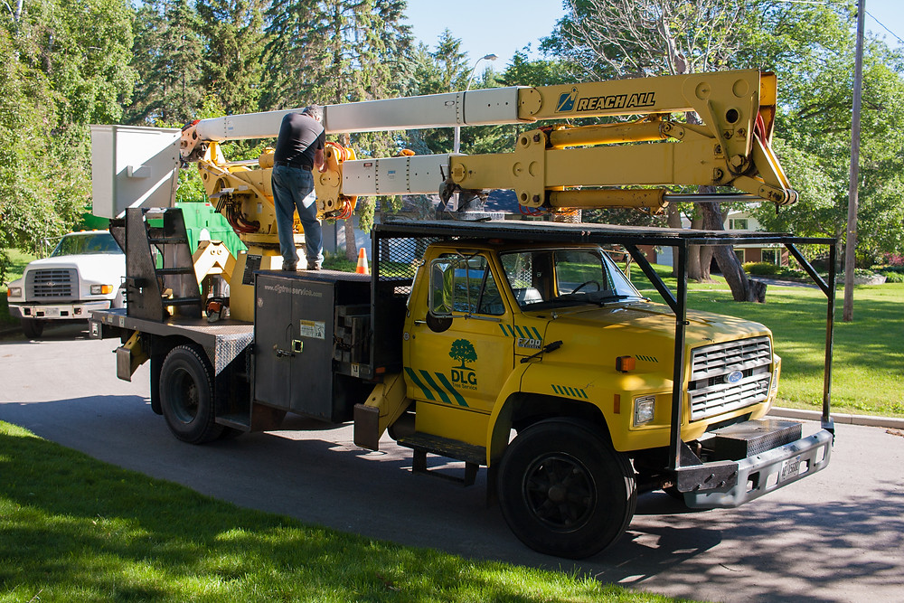 DLG tree service preparing to do some tree trimming in the North end of the city of Barrie for a client.