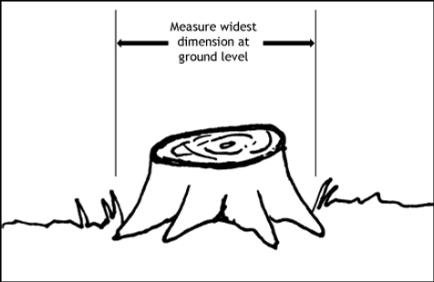 How to measure a stump.