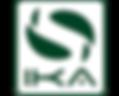International Kiteboarding Association («IKA»)