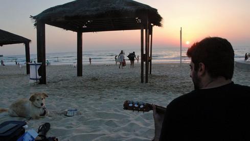 גיטרה ושקיעה - שיעורי גיטרה