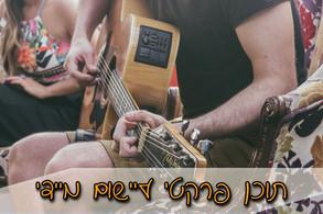 תוכן פרקטי שיעורי גיטרה אונליין