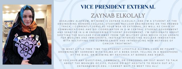 Zaynab.png