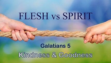 Flesh vs spirit kindness & goodness.jpg