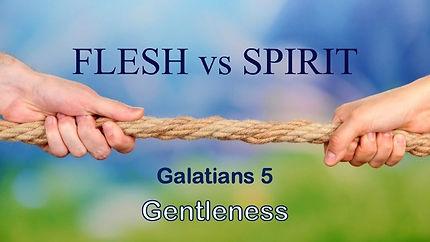 Flesh vs. Spirit Gentleness.jpg