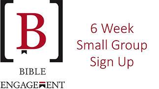 Bible Engagement sign ups.jpg