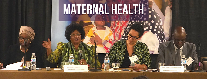 panel_ maternal Health-3.png