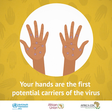 Get the Facts   Hand Hygiene