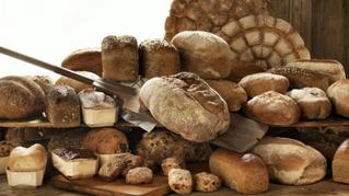 Ja of Nee tegen Brood?