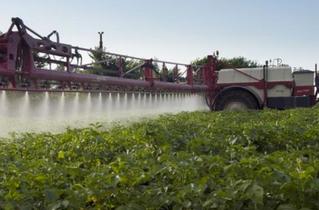 'Verband tussen pesticidengebruik en geboorteafwijkingen'