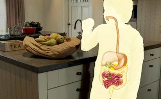 Spijsvertering en je darmflora; belangrijk voor een goede gezondheid