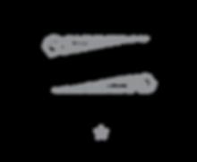 DSI_Logo_BW_01.png