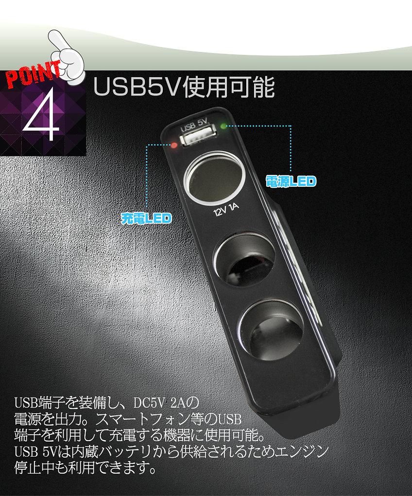 UPS300_07.jpg